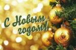 ППОС ЛПИ -филиала СФУ поздравляет всех с наступающим Новым годом !