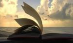 Проводится конкурс стихов и прозы, посвященный 45-летию Лесосибирска